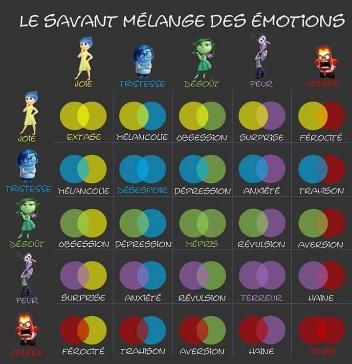 Emotions sentiments